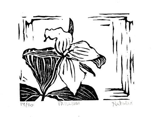 Trillium   Original Block Print