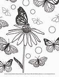 free downloadable monach butterfly coloring page