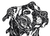 Black and white block print of dog looking up