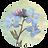 Mackinac Memories Logo