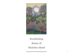 Mackinac Island Section
