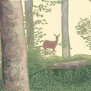 Deer in the Woods - Wildlife Print