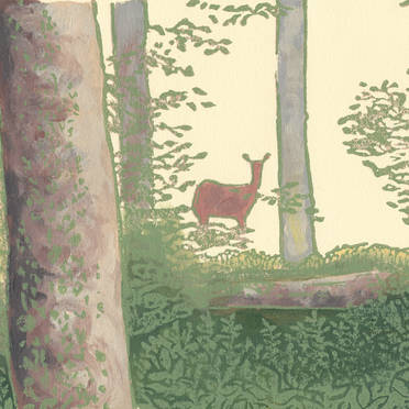 Deer in the Woods - Wildlife Print