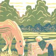 Peek-a-boo - Horse & Girl Print