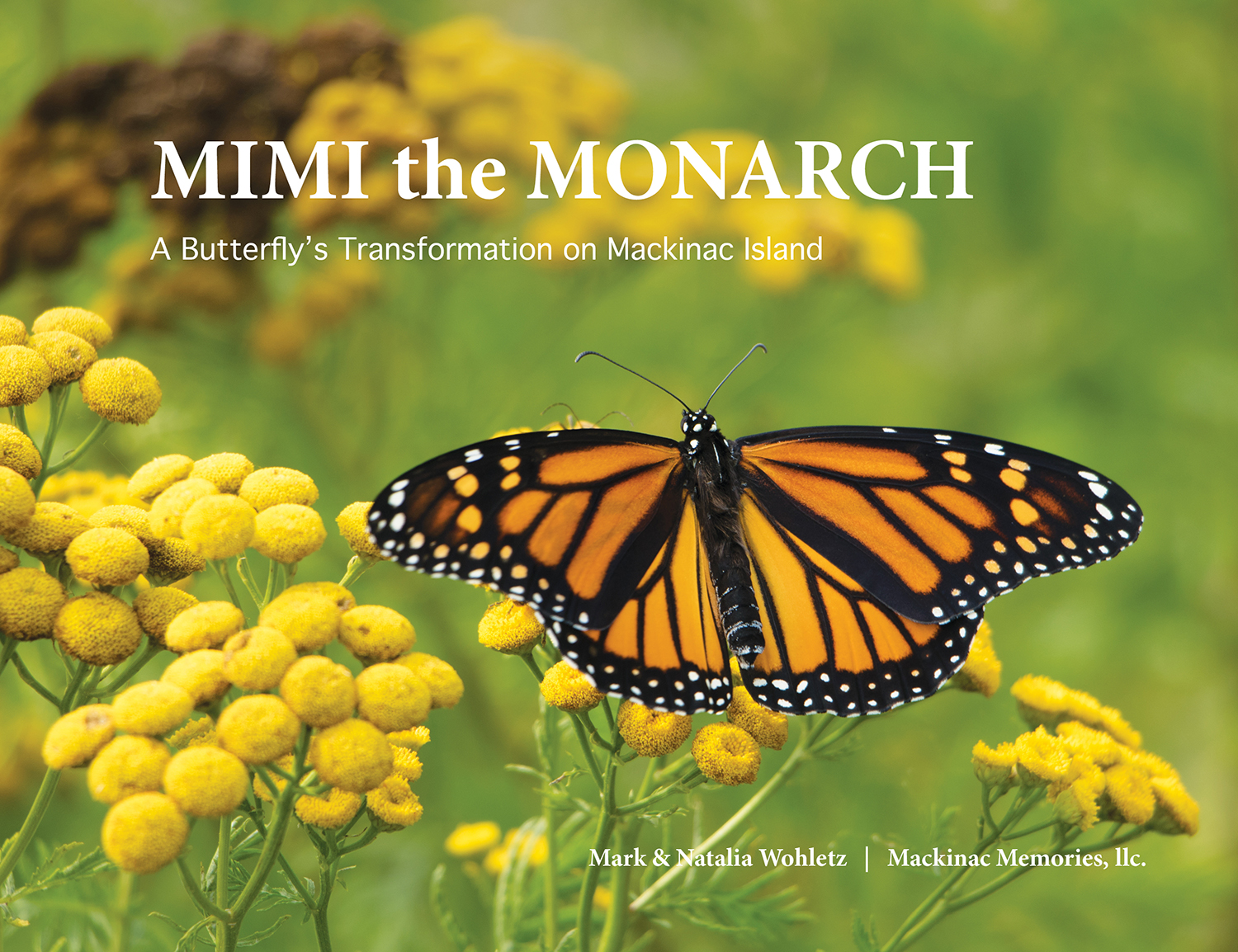 MIMI the MONARCH by Natalia & Mark