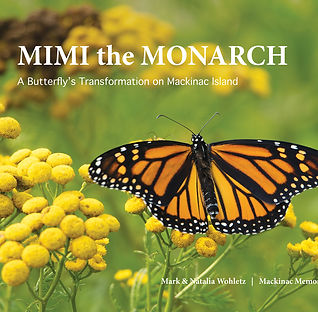MIMI the MONARCH Children's book cover
