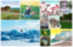 Mackinac Memories | books and fine art