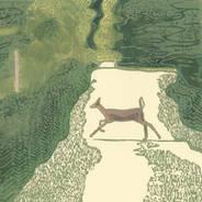 Doe Crossing - Deer Print
