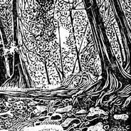 Brown's Brook - Natural Landscape Print