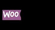 partner-woocommerce-100.png