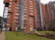 VIGLIECCA_01.jpg