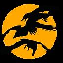 ravens-800x800.png