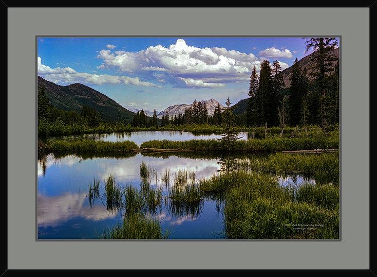 wix-beaver-pond-reflections_24x36_1.jpg