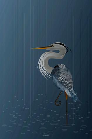 Heron In Rain