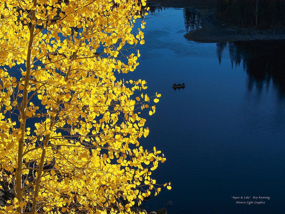 blue-gold_18x24_1.jpg