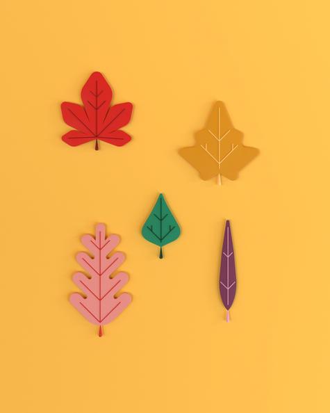 materiales y hojas.jpg