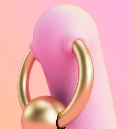 genital jousting_detalle j.jpg