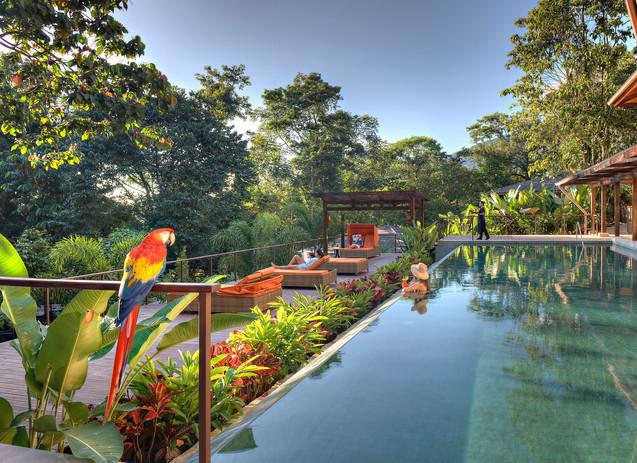 Nayara Springs (3).jpg