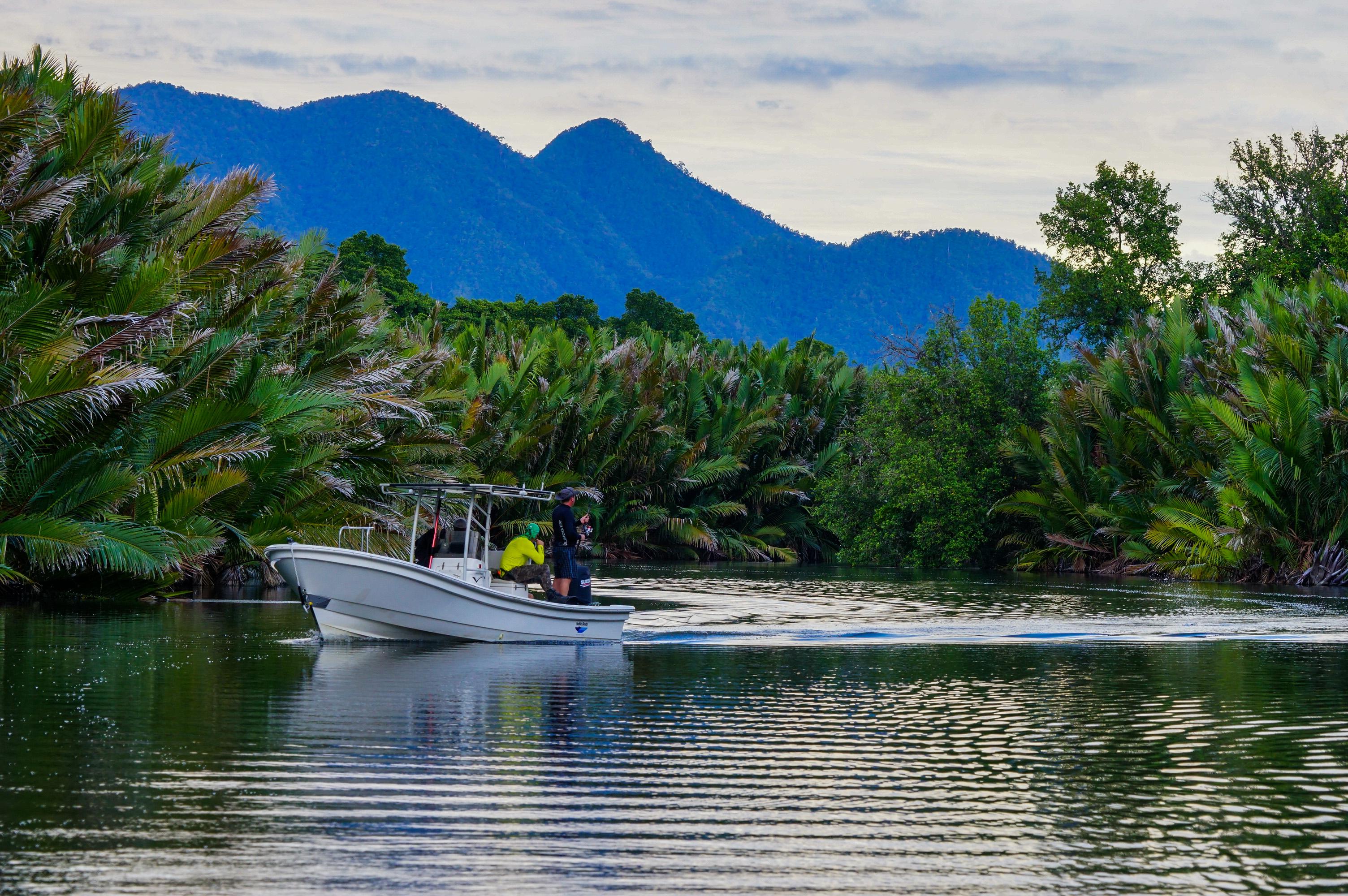 Black Bass Fishing PNG