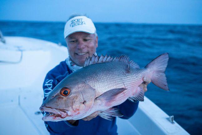 Red Bass - Baia Sportfishing PNG