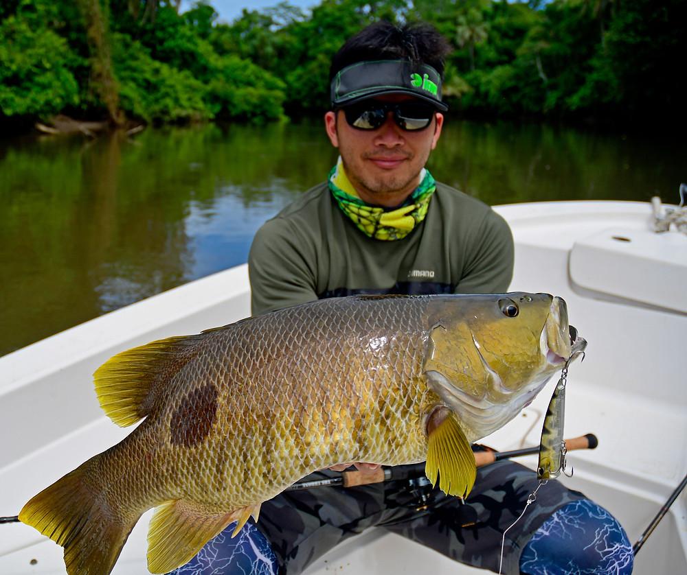 Spottail Bass - Baia Sportfishing PNG