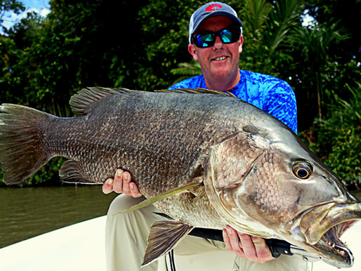 Top 5 Fish to Catch in Papua New Guinea