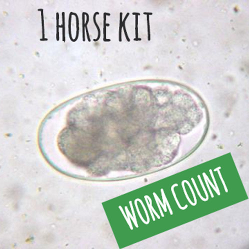 1 Equine worm count kit