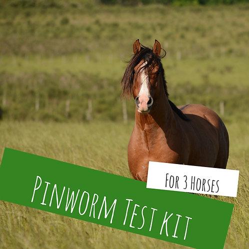 Pinworm Kit For 3 Horses