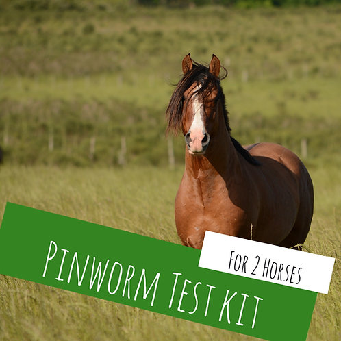 Pinworm Kit For 2 Horses