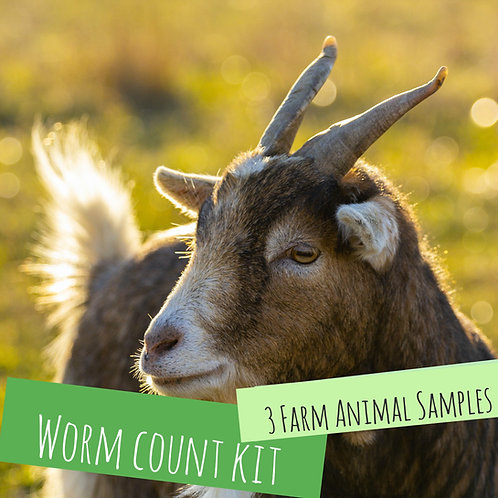 Worm Count Kit for 3 Farm Animals