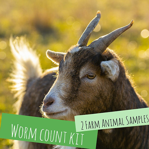 Worm Count Kit For 2 Farm Animals