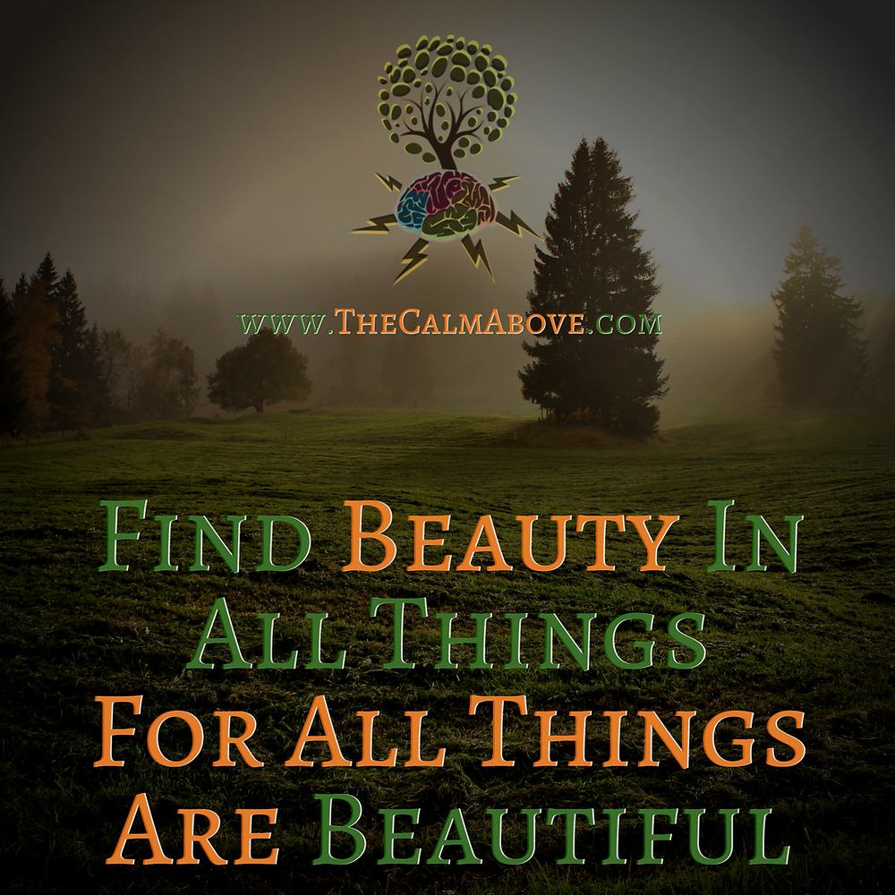 Find Beauty in All Things