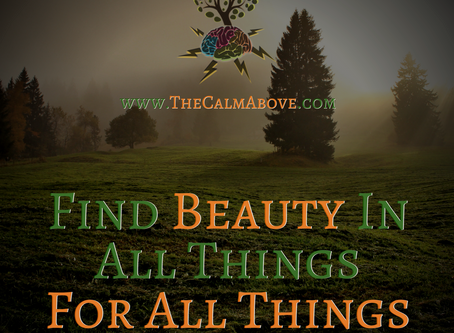 """Find Beauty In All Things, For All Things Are Beautiful"""