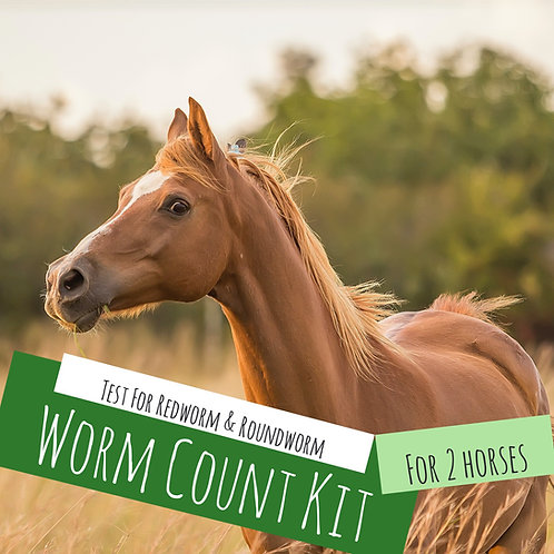 Worm Count Kit For 2 Horses