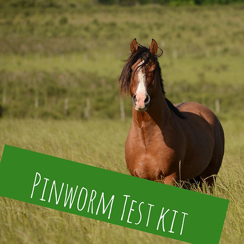 Pinworm Kit For 1 Horse
