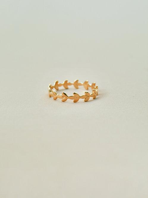 טבעת דפנה צ.זהב מיקרון