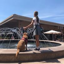 Dewey Ellie fountain.jpg
