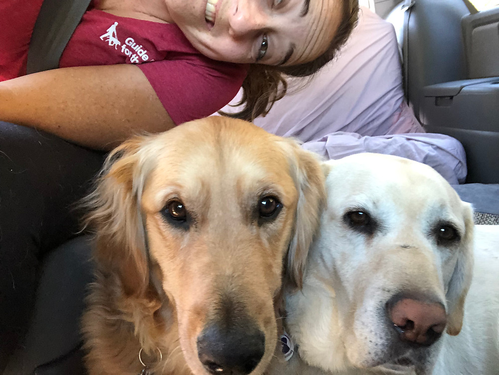 Sumner, a golden retriever, and Ricki's heads are at the bottom of the photo, and I'm leaned over the seat to take this selfie with them. Neither dog looks happy.
