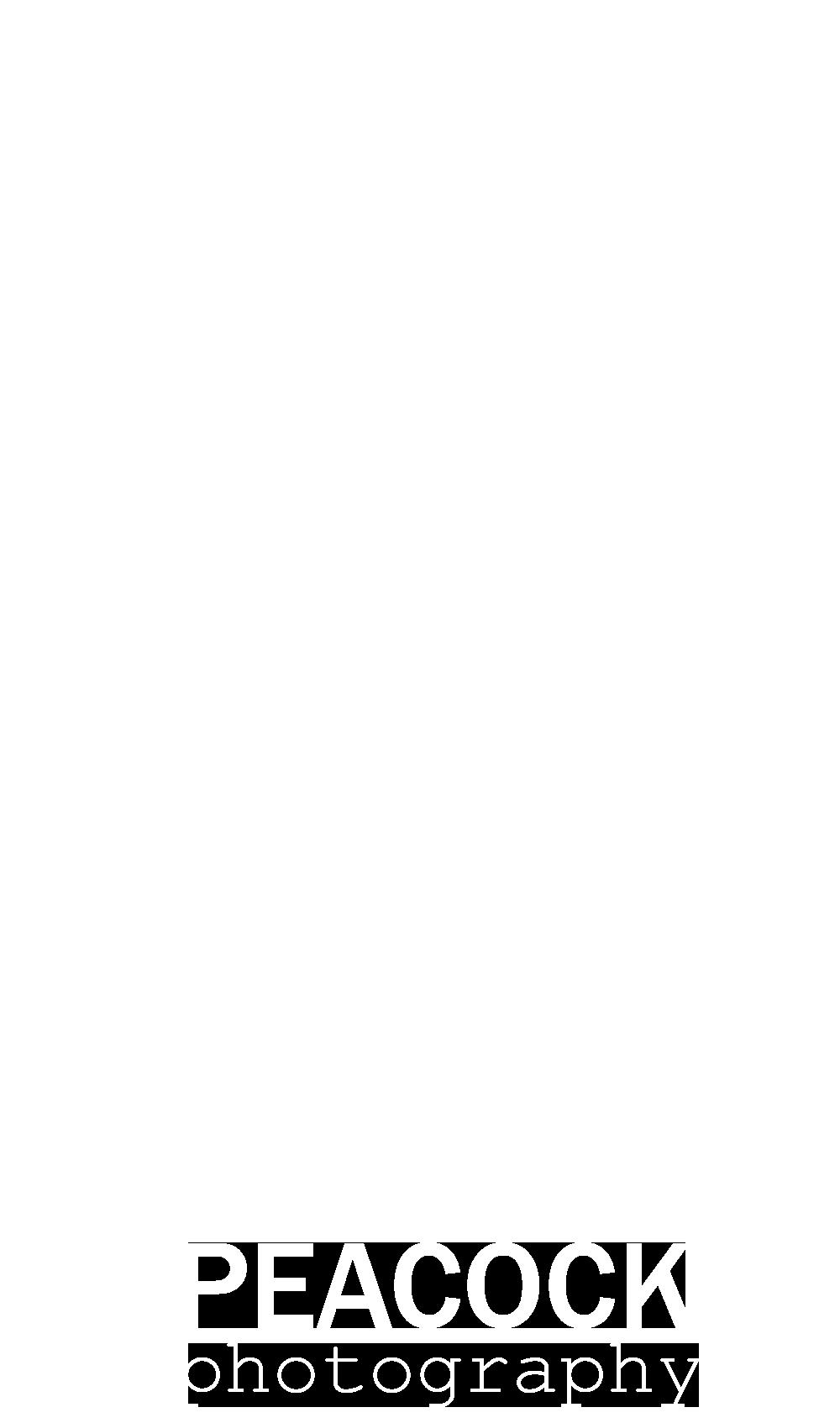 peacock logo z tekstem