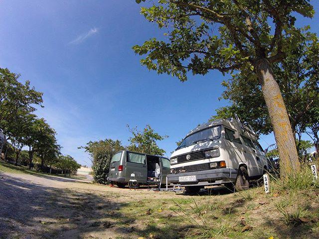 Dunes Camp 🚐🇫🇷🌴_==============_#westy #westfalia #t3 #vw #volkswagen #vwcamper #vanagon #vanagon