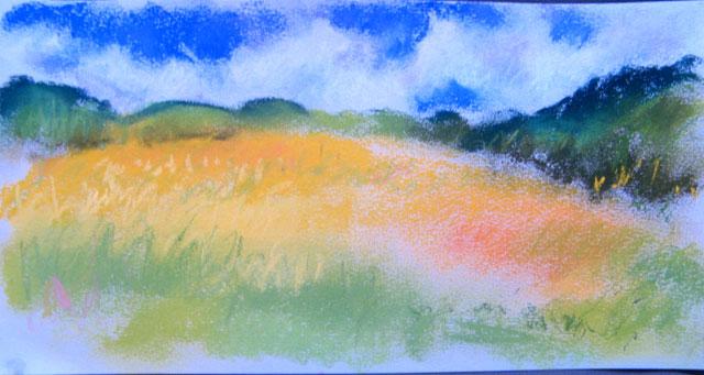 golden meadow - pastel