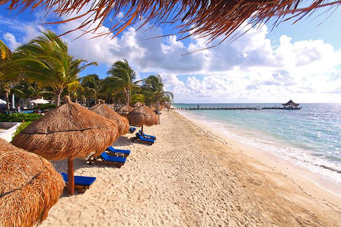 Desire Pearl Beach