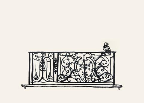 Pigeon balcony paris.jpg