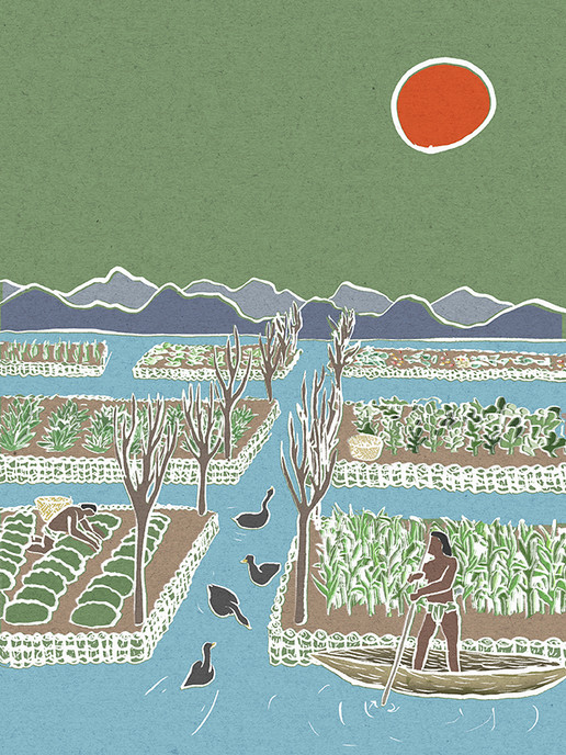 Sowing Seeds Magazine