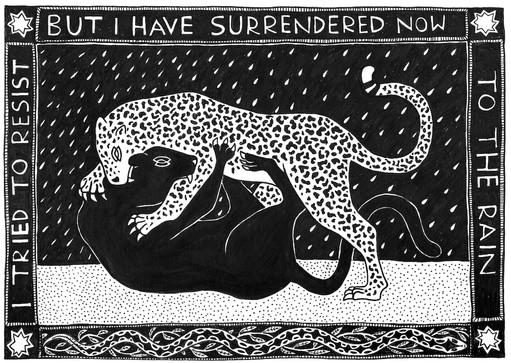 Surrender  //  Katherine Shapiro