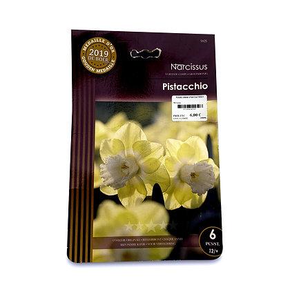 Narcisse pistachio - bulbes