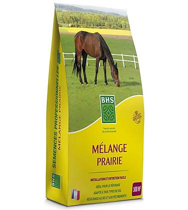Mélange prairie - semences