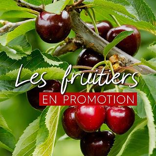 encart_promo_fruitiers-14.jpg