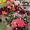 Thumbnail: Fleurs artificielles
