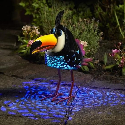 Tango toucan
